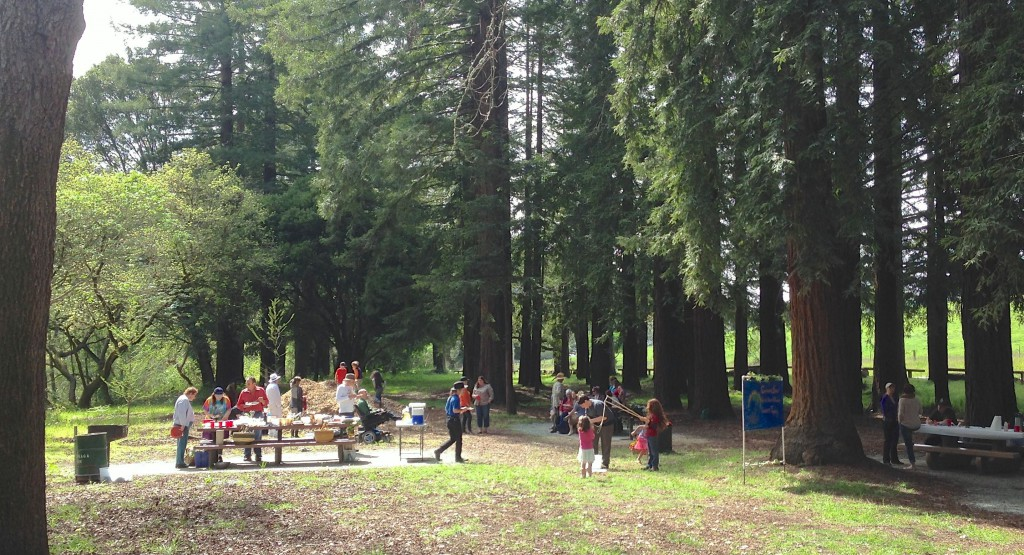 Spring Equinox Picnic – is canceled