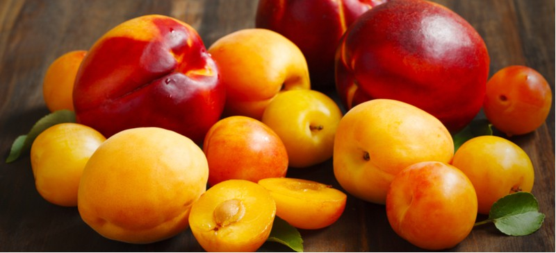 Picture of stone fruits
